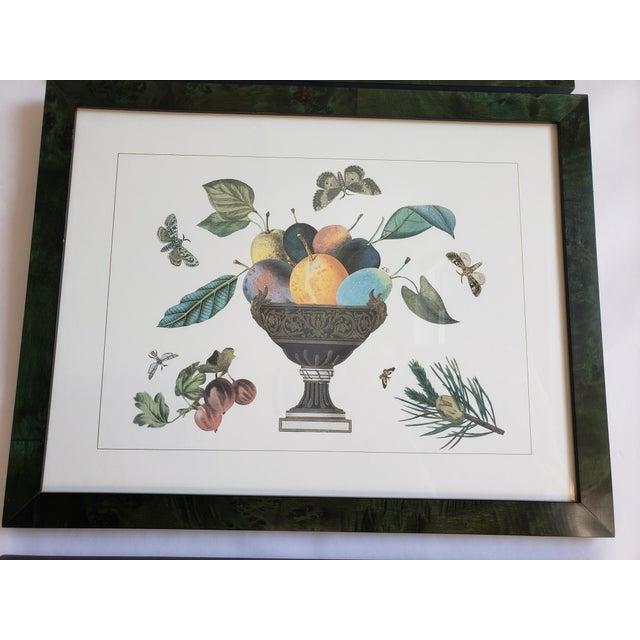 1990s Decorative Butterfly Botanical Framed Prints-Set of 3 For Sale - Image 5 of 12