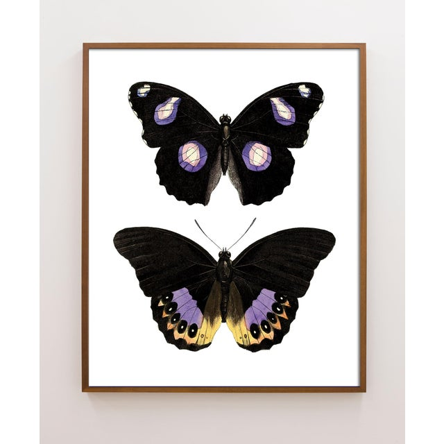 Carnaby Butterflies in Purple and Yellow Art For Sale In Los Angeles - Image 6 of 6