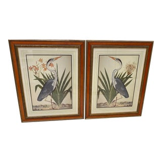 Vintage Birds Motif Prints, Pair For Sale