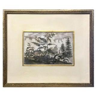 Antique Soicher-Marin Tropical Landscape Print For Sale