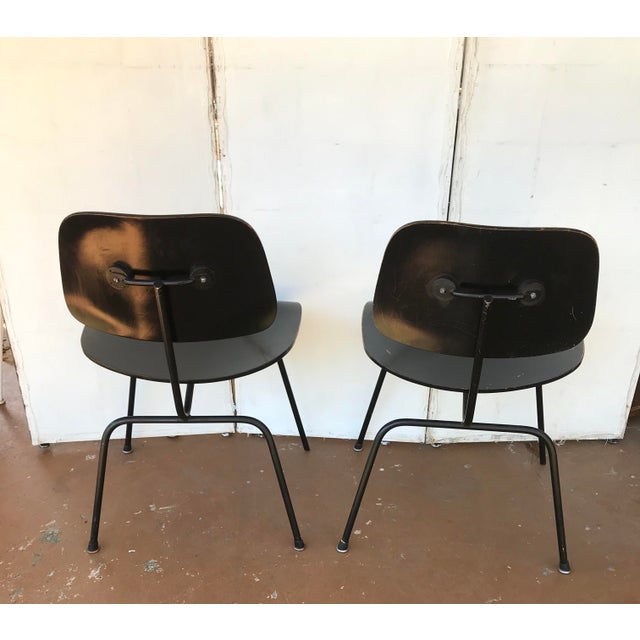 Charles and Ray Eames 1950s Eames Ebony Plywood Dcm Side Chair - a Pair For Sale - Image 4 of 7