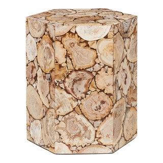 Hexagon Petrified Wood Stool, Natural Light For Sale