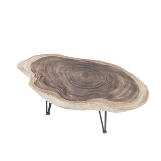 Organic Modern Oval Living Edge Coffee Table For Sale