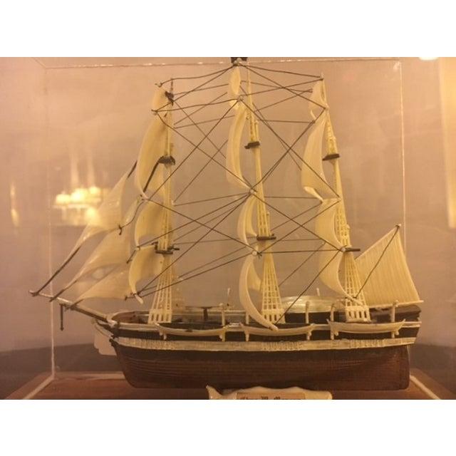 Model Ship in Case - Image 4 of 5