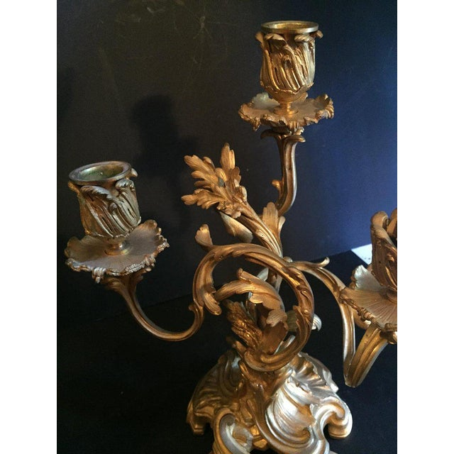 Bronze 19th Century Ormolu Louis XV Style Candelabras - a Pair For Sale - Image 7 of 12