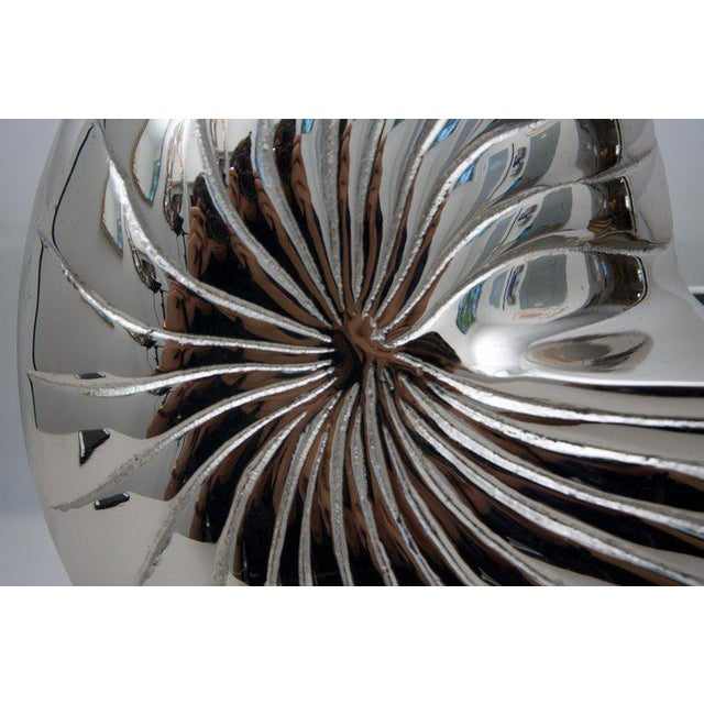 Current Bespoke Nickel-Plated Nautilus Shell Cachepot For Sale - Image 4 of 6