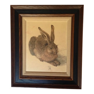 "1960s ""Rabbit"" Animal Reproduction Print After Albrecht Durer, Framed For Sale"