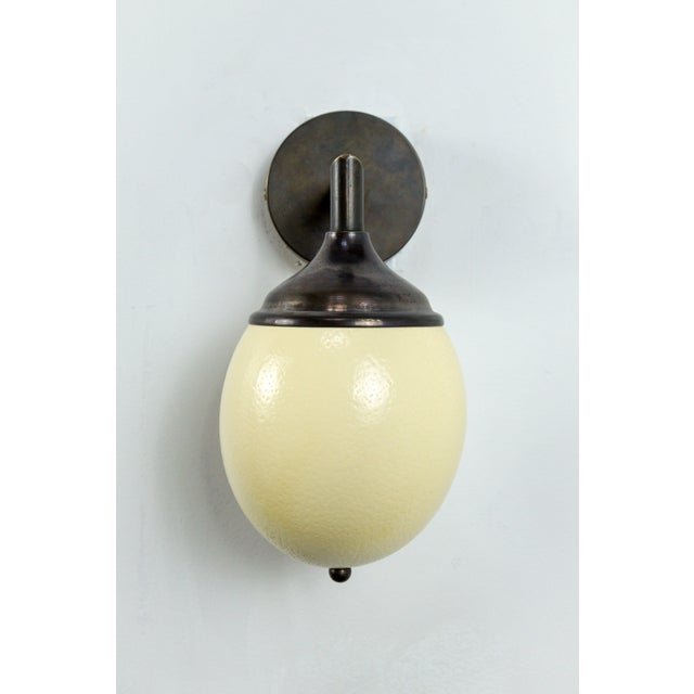Ostrich Egg Cast Brass Arm Sconce For Sale In San Francisco - Image 6 of 11