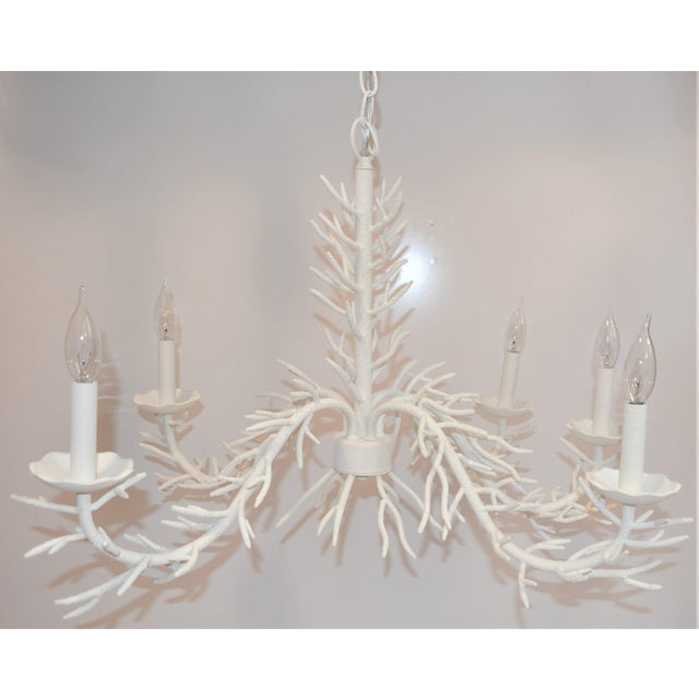 Palm Beach Chic Faux Coral Chandelier, Five Light For Sale In Houston - Image 6 of 10