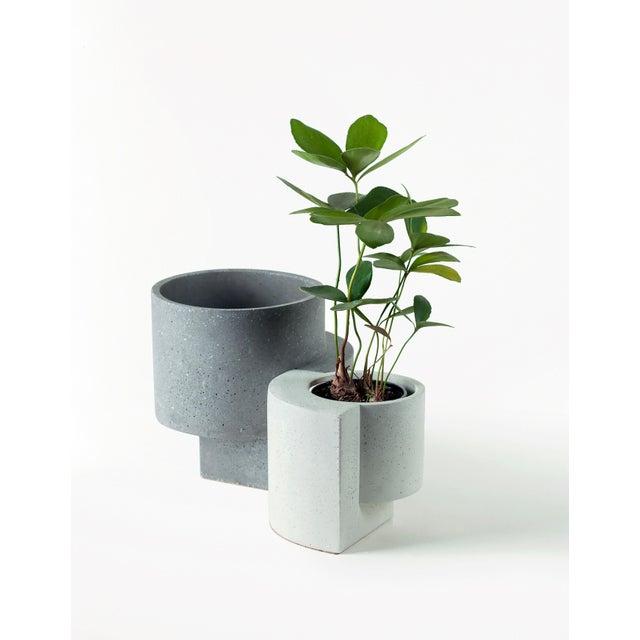 Tortuga Platform Graphite Medium Planter For Sale - Image 4 of 6