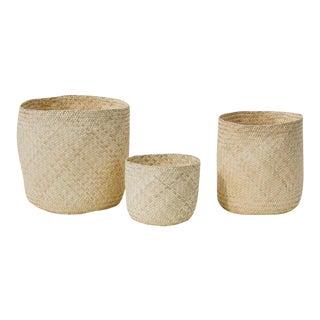 Oaxaca Palm Baskets - Set of 3 For Sale