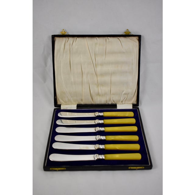 Sheffield English Celluloid Spreaders, Tea Knives, Cased Set of Six For Sale - Image 10 of 10