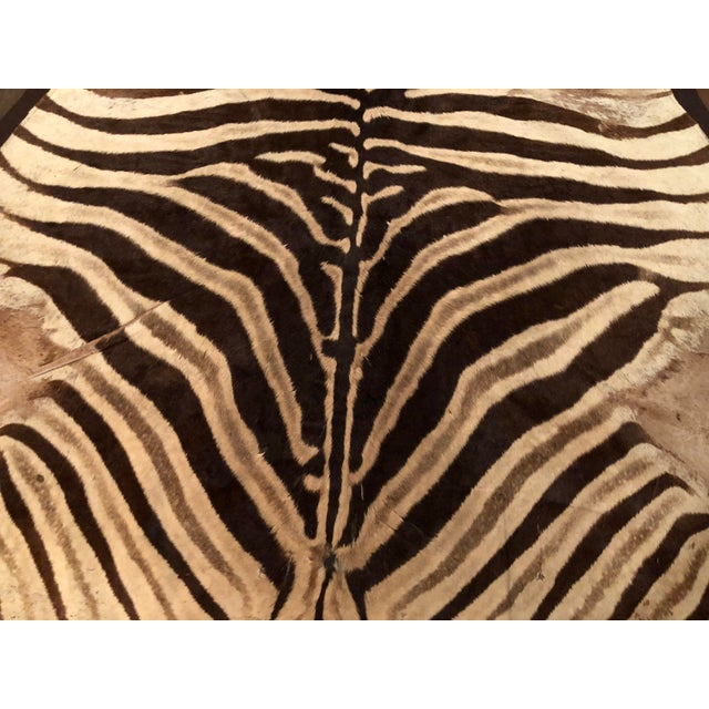1960s 1960s Vintage Burchell Zebra Rug For Sale - Image 5 of 12