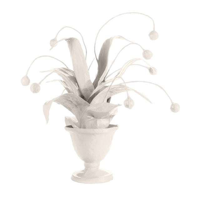 Contemporary Stray Dog Designs for Chairish Crunchberry Faux Plant, White For Sale - Image 3 of 3