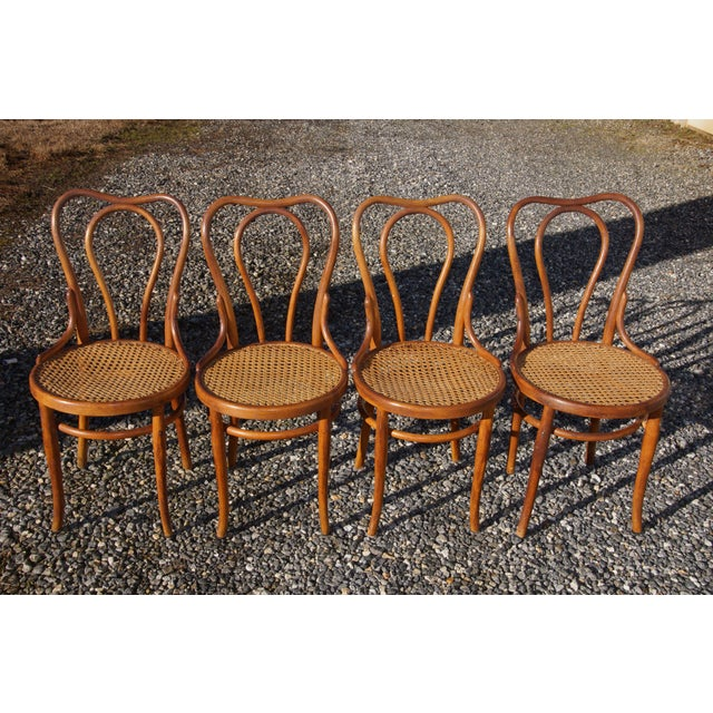 1940s Antique Thonet-Style Bentwood Heavy Cane Woven Seat Parlor Bistro Chairs - Set of 4 For Sale - Image 13 of 13