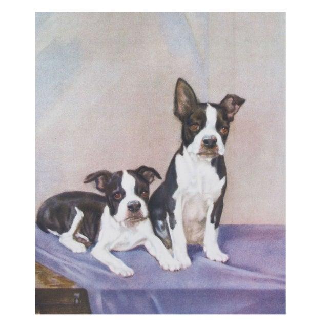 Vintage Diana Thorne Print - Bulldogs - Image 1 of 3