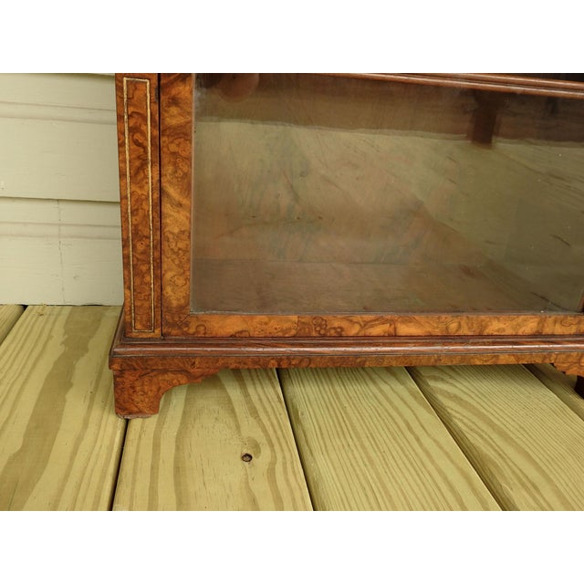 English Traditional Neoclassical Burl Walnut Table Top Display Cabinet For Sale - Image 3 of 11