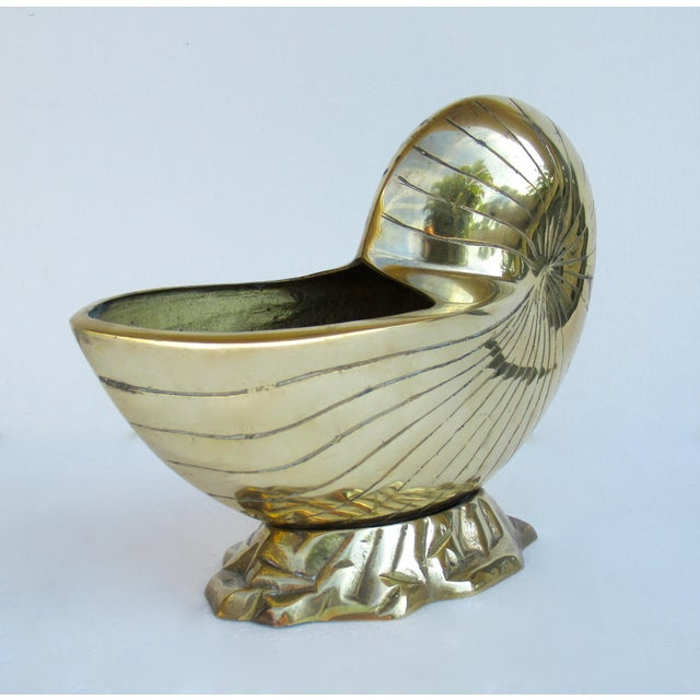 C.1970's Vintage Mid-Century Modern Brass Nautilus Shell Bottle Cooler For Sale - Image 13 of 13