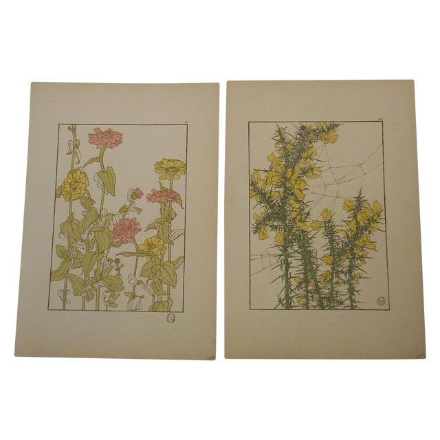 Art Nouveau Botanicals Prints - Pair - Image 1 of 4