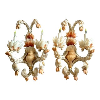 Large Shell Sconces - A Pair For Sale