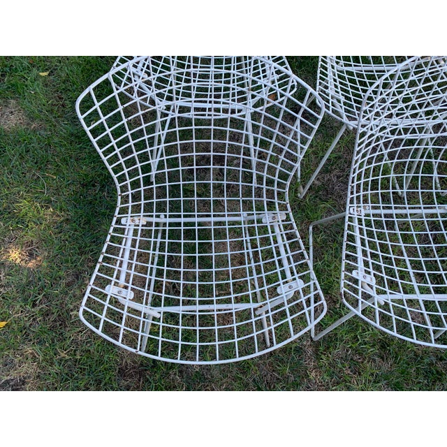 Contemporary Late 20th Century Bertoia Outdoor Side Chairs- Set of 12 For Sale - Image 3 of 9