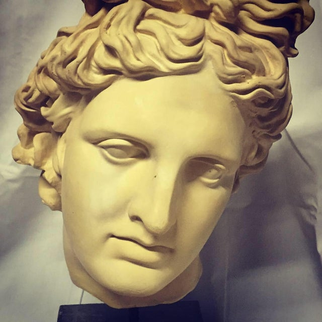 Beautiful NeoClassical plaster bust of a Greek God's head that seems to offer a different expression from each perspective...