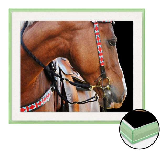 Native 1 by Holly Roesch Contemporary Photograph in Light Green Acrylic Frame, Small For Sale