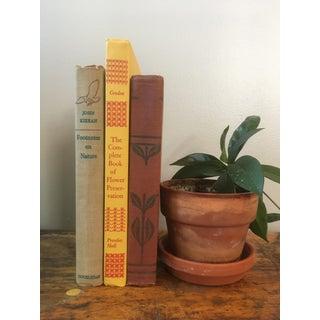 Antique Decorative Flora and Fauna Books - Set of 3 Preview