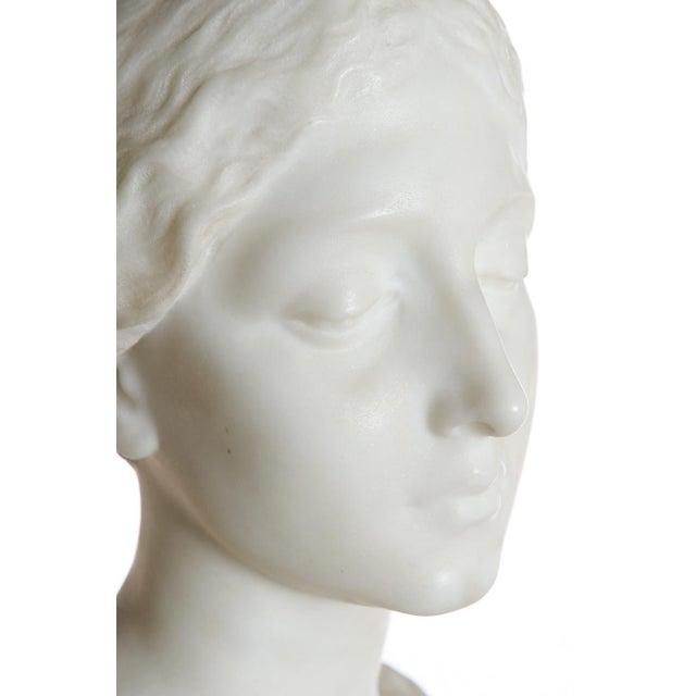 Antique Italian Marble Bust of a Female For Sale In Los Angeles - Image 6 of 11