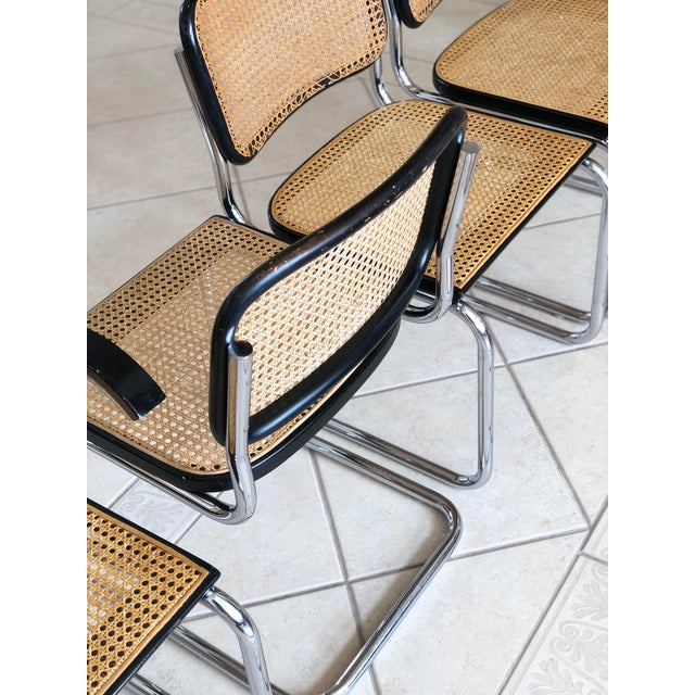 1950s Knoll Authentic Ebonized Beech Cesca Chairs – Set of 7 For Sale - Image 9 of 12
