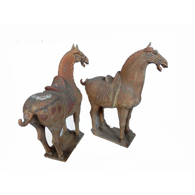 Lg Tang Dynasty-Style Standing Horses - a Pair - Image 6 of 8