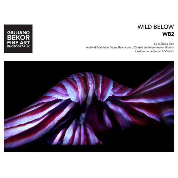 """Figurative Giuliano Bekor """"Wild Below"""" Wb2, Photograph For Sale - Image 3 of 3"""