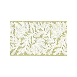 Scalamandre Coventry Embroidered Tape, Celery For Sale