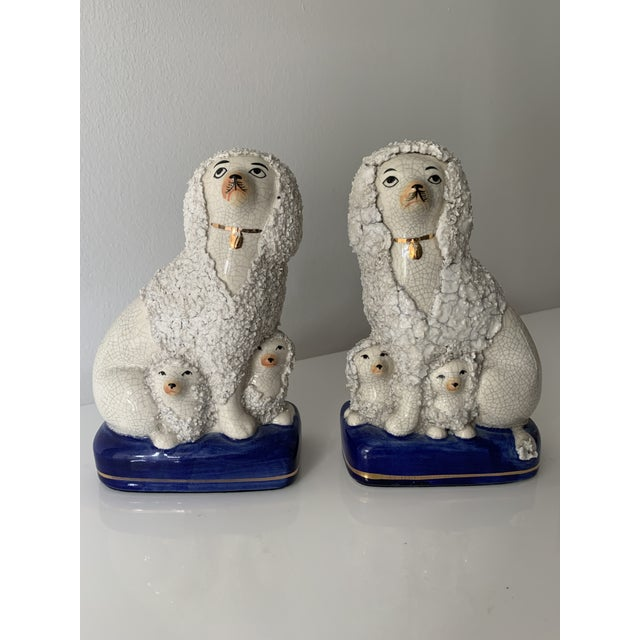 Antique, family of Staffordshire poodles with babies hiding under their parent's feet and fur. The right poodle is...