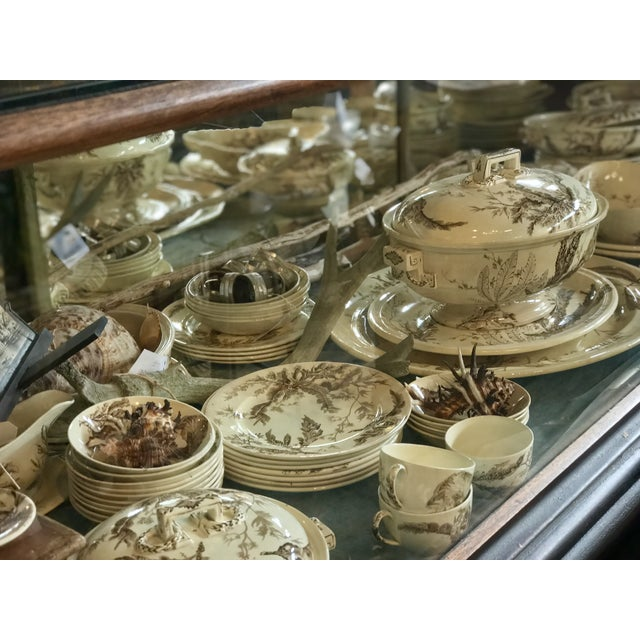 Late 19th Century Seaweed Pattern Brown Transferware by Wedgewood For Sale - Image 5 of 7