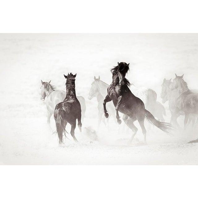 Kimerlee Curyl Kimerlee Curyl, Wyoming Renegades II , 2011 For Sale - Image 4 of 4