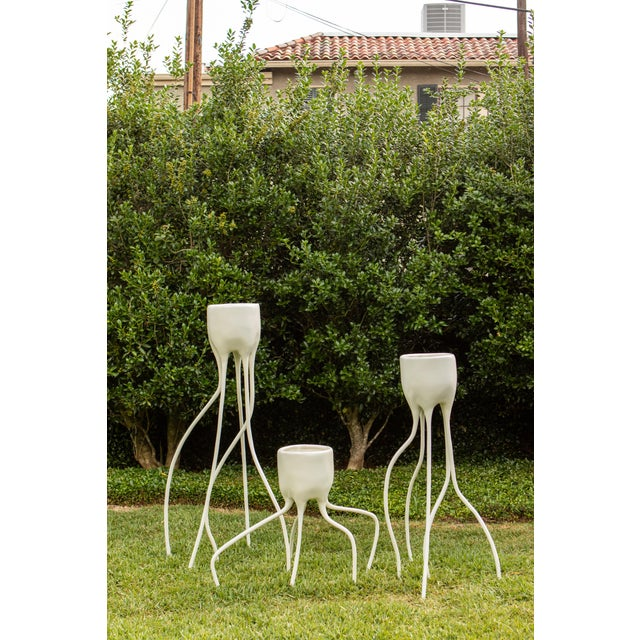Contemporary Monstera Large Porcelain Planters For Sale - Image 3 of 3