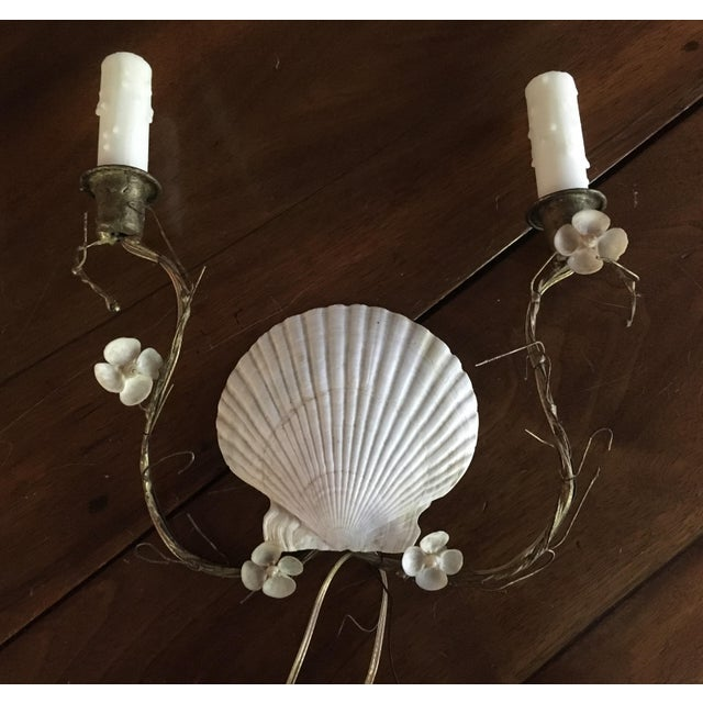 Shell Sconces - Pair - Image 4 of 8