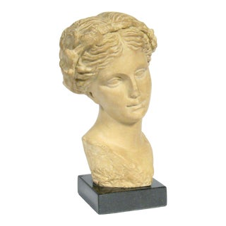 Classical Greek Female Bust of Aphrodite, Goddess of Love