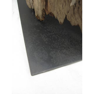 Pair of Tree Trunk Floor Lamps Preview