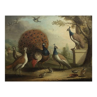"""""""Peacock & Peahens in Classical Landscape"""" Painting Attr. Marmaduke Cradock For Sale"""