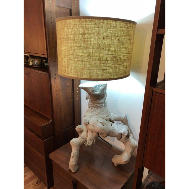 1960s Vintage Driftwood Lamp For Sale - Image 11 of 13