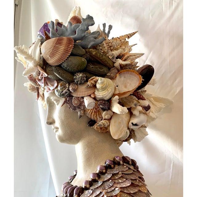 Shell La Sirena Seashell Bust For Sale - Image 7 of 11