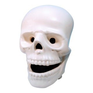 Vintage Atlantic Mold Company Atribued Bone Head Face Facial Skull Skeleton