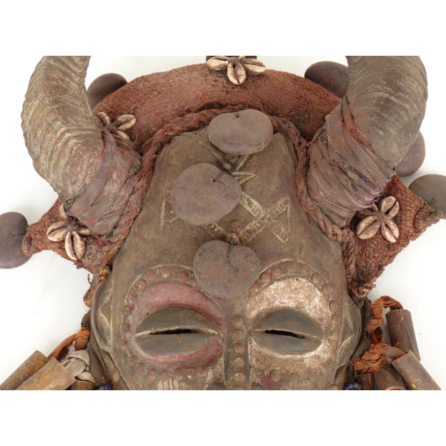 African Bamileke Tribal Mask From Cameroon W/Horns For Sale - Image 4 of 9