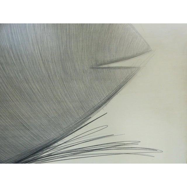 """Fish"" Original Drawing by Yuri Zatarain For Sale In Miami - Image 6 of 10"