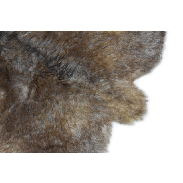 "Wool Sheepskin Pelt Handmade Rug - 2'6"" x 3'8"" - Image 3 of 8"