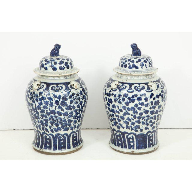 1960s Chinese Export Jars With Lids - a Pair For Sale In New York - Image 6 of 11