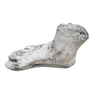 Vintage Plaster Foot of Hercules For Sale
