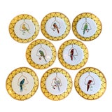Image of Chelsea House Decorative Tropical Bird Parrot Plates - Set of 8 For Sale